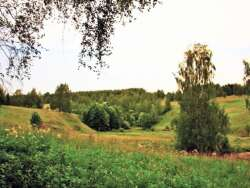 Малеевские просторы